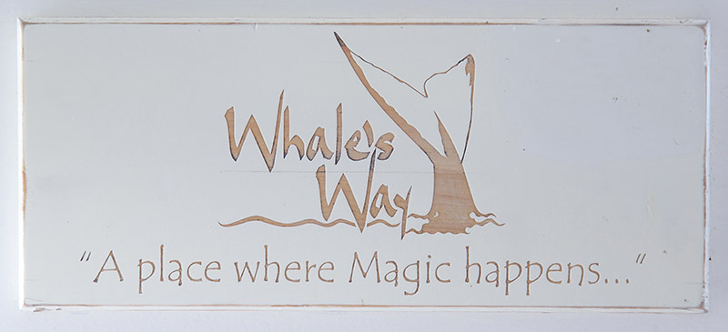Whale's Way Ocean Retreat on the Garden Route
